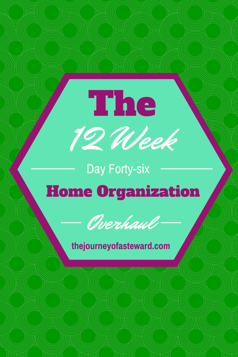 The 12 week Home Organization Overhaul~Day 46