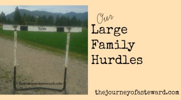 Large Family Hurdles