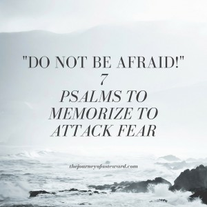 -Do not be afraid!-7 psalms to memorize to attack fear